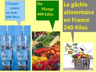 Gâchis alimentaire en France