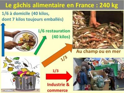 Gâchis alimentaire en France B