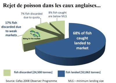 Europe peche rejet poisson angleterre cefas